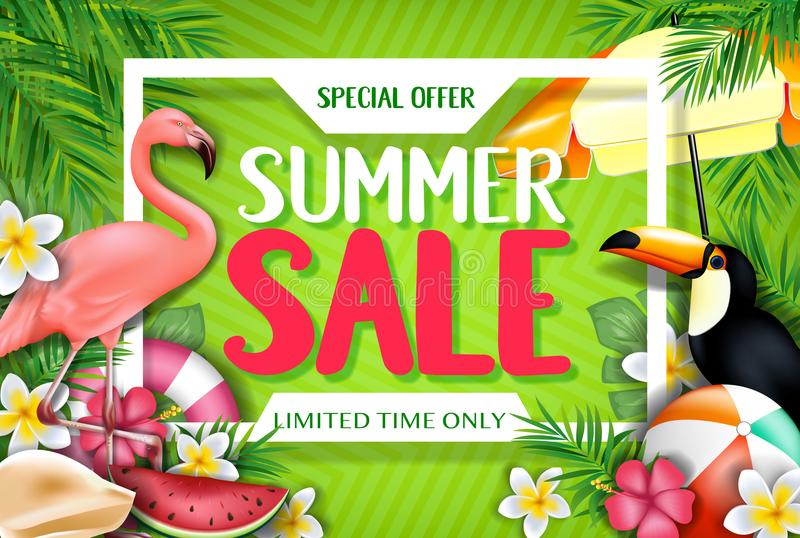 Special begränsad Tid för erbjudandesommar Sale endast annonsering inom den vita ramen royaltyfri illustrationer