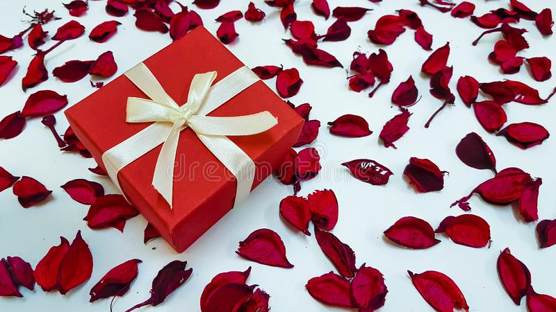 Special Day Gift for someone special in lovely background stock photography
