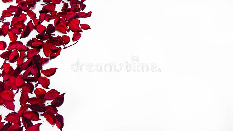 Special Day Gift for someone special with space for quotes royalty free stock photo