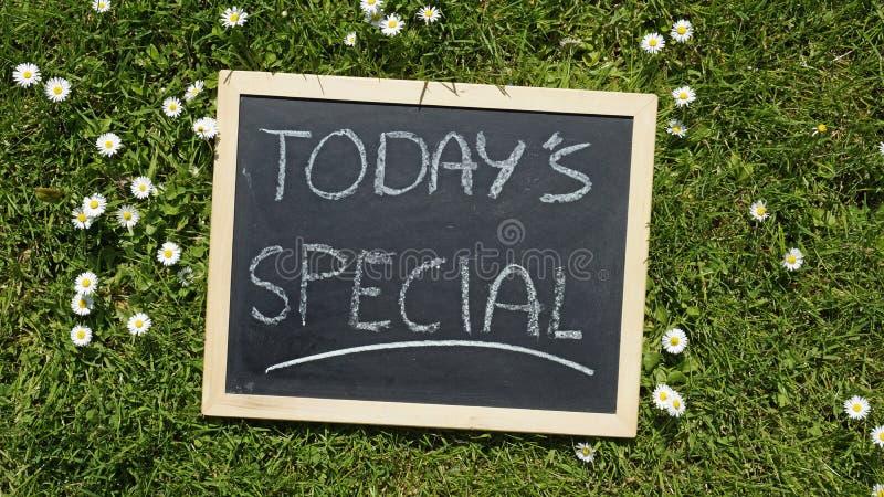 Special de hoje fotografia de stock royalty free