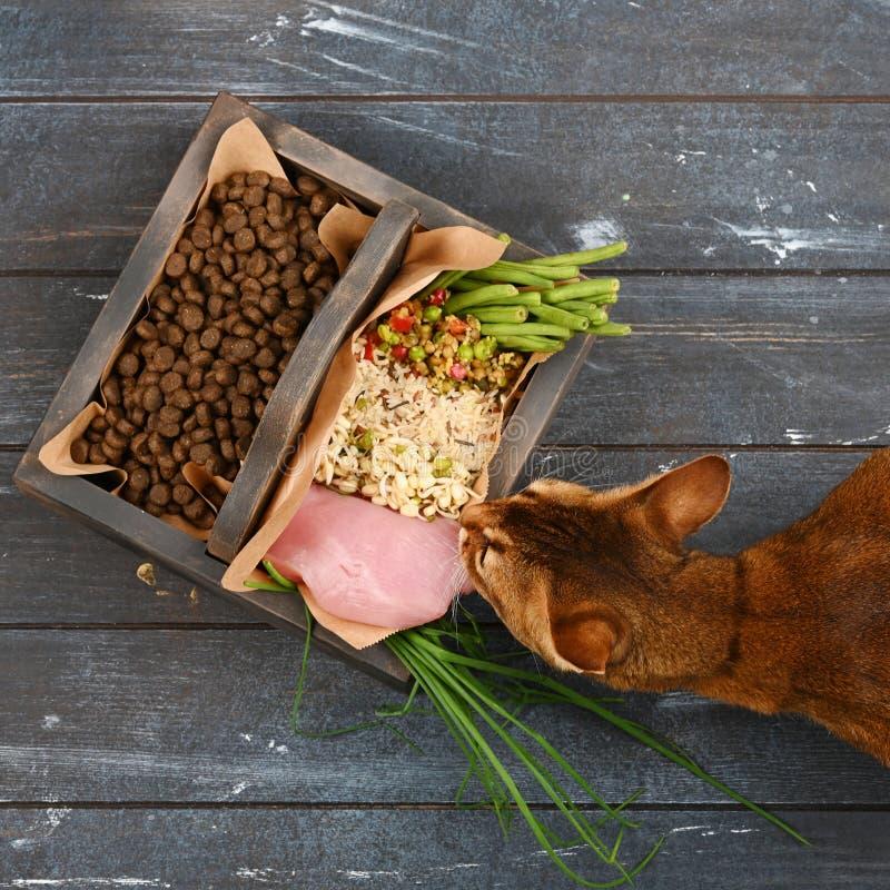 Special husdjurmat VS naturlig husdjurmat Ingredienskalkon, gryn, löneförhöjning, gräsplaner och groddar i brun träask royaltyfri foto