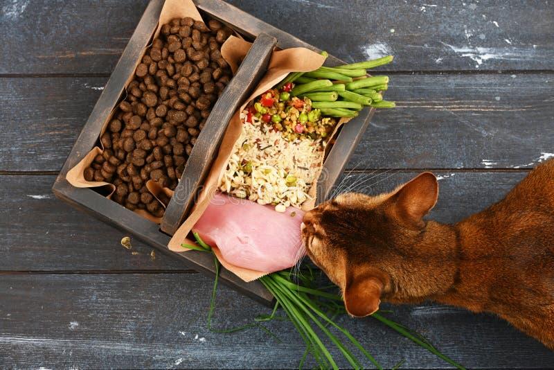 Special husdjurmat VS naturlig husdjurmat Ingredienskalkon, gryn, löneförhöjning, gräsplaner och groddar i brun träask royaltyfri bild