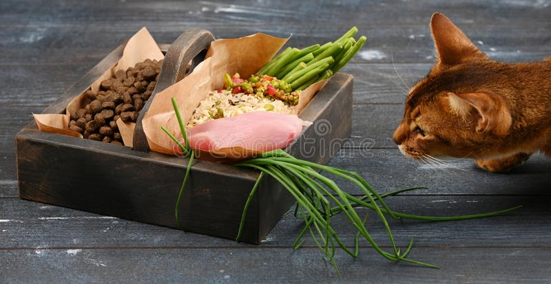 Special pet food VS natural pet food. Ingredients turkey, groats, rise, greens and sprouts in brown wooden box. Special pet food VS natural pet food royalty free stock images