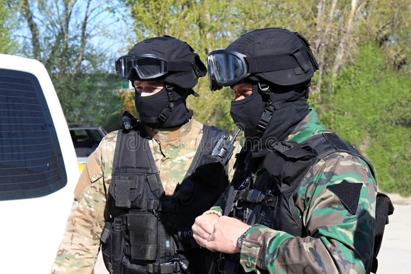 Special police commandos arrest a terrorist. Training SWAT royalty free stock image