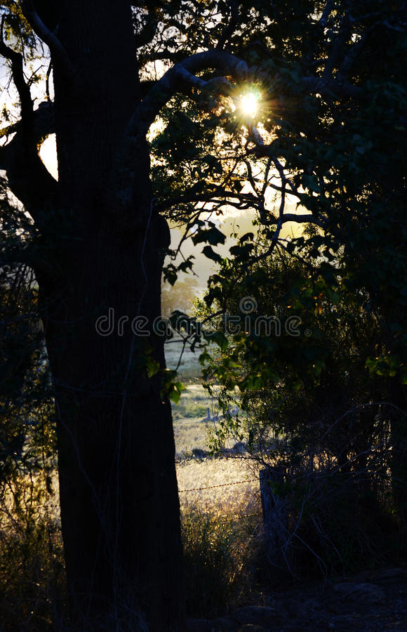 Special secret private place in beautiful countryside. Everyone has a beautiful secret place to go when they want to be quiet and think about life. This image is stock images