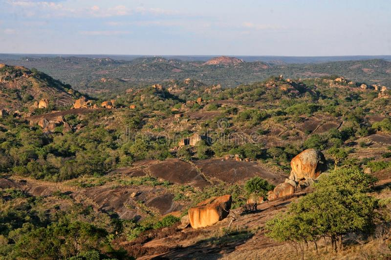Very special vegetation on the rocks of the Matopos National Park, Zimbabwe stock photo