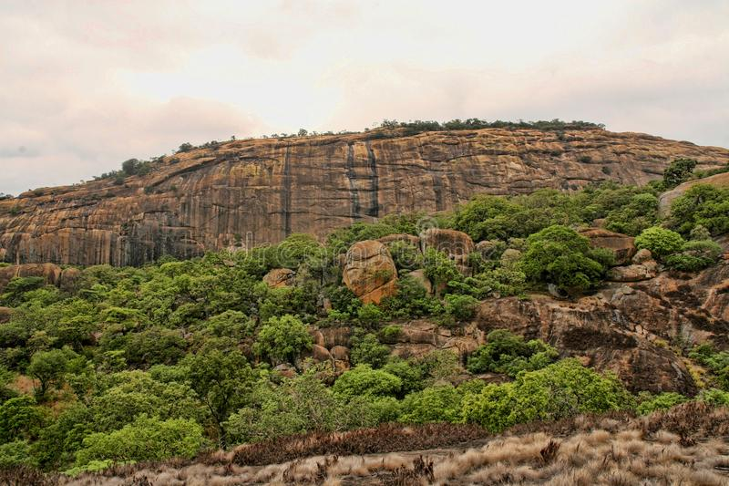 Very special vegetation on the rocks of the Matopos National Park, Zimbabwe royalty free stock image