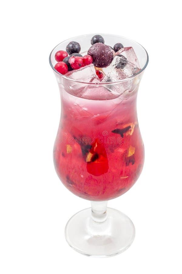 Speciala frukter blandar drinken med is arkivbild