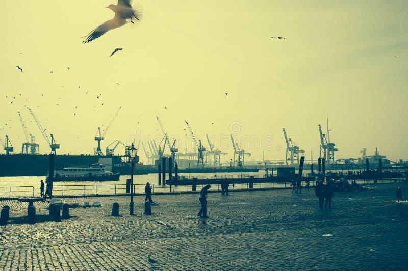 Speciale atmosfeer op de vissenmarkt in Hamburg met een mening van de haven royalty-vrije stock foto