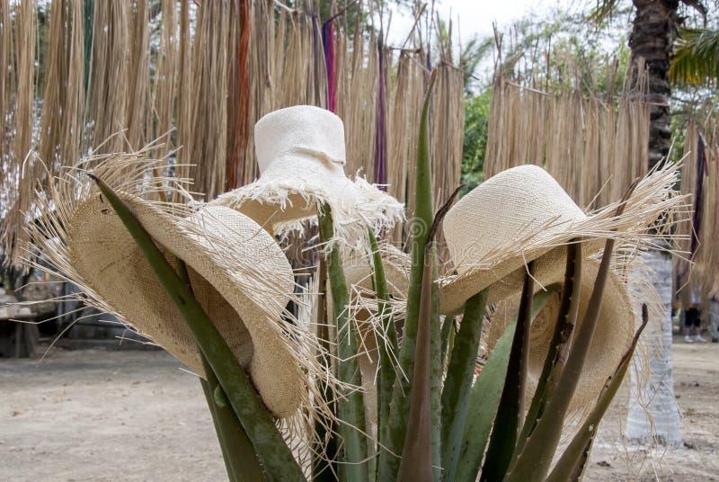 Speciale Vertoning van Straw Hats royalty-vrije stock foto