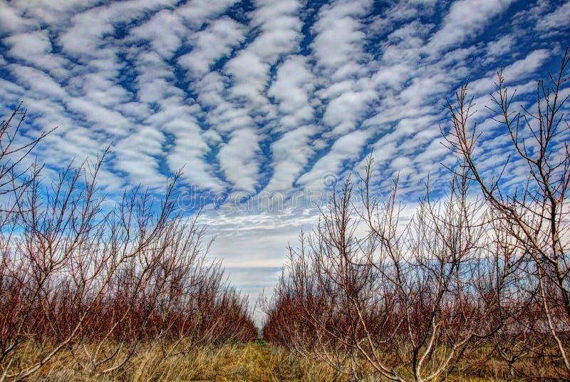 Speciale wolken royalty-vrije stock fotografie