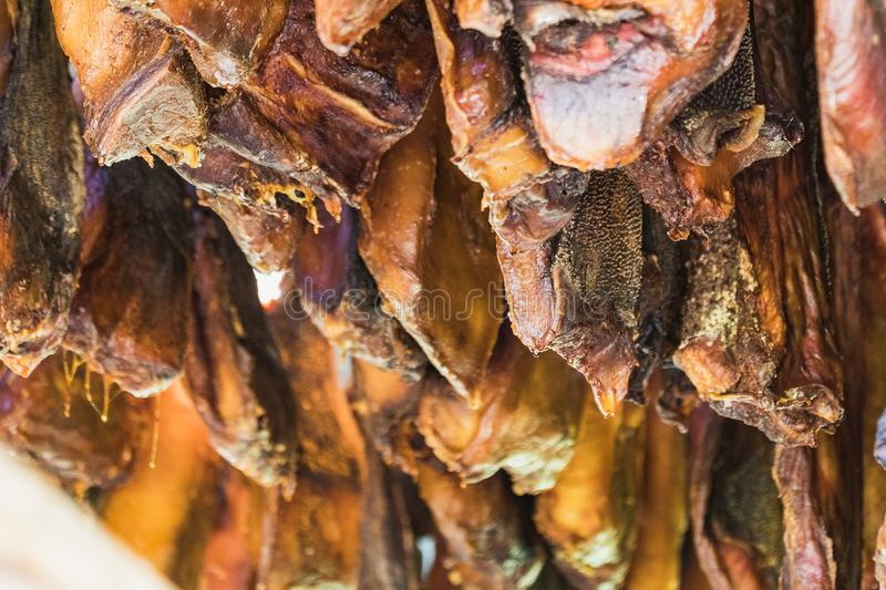 Specialty of iceland called hakarl fermented shark. In open warehouse stock images
