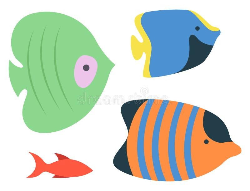 Specie del pesce dell'oceano del mare, habitat isolati dell'acquario illustrazione vettoriale