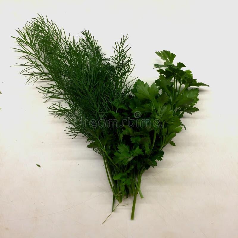 Specie delle verdure nel verde fotografie stock libere da diritti