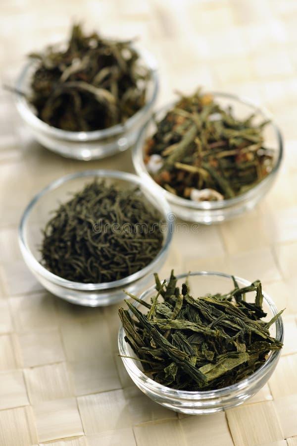 Specie differenti di tè verde in piccole ciotole fotografia stock libera da diritti