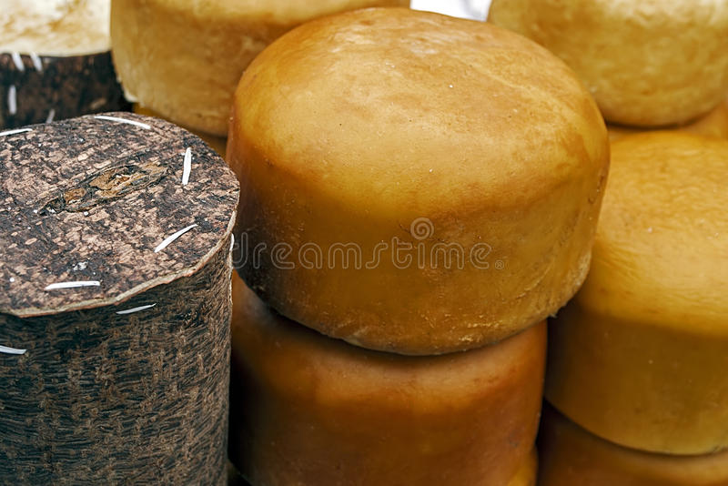 Specific Cheese For Romania 5 Stock Images