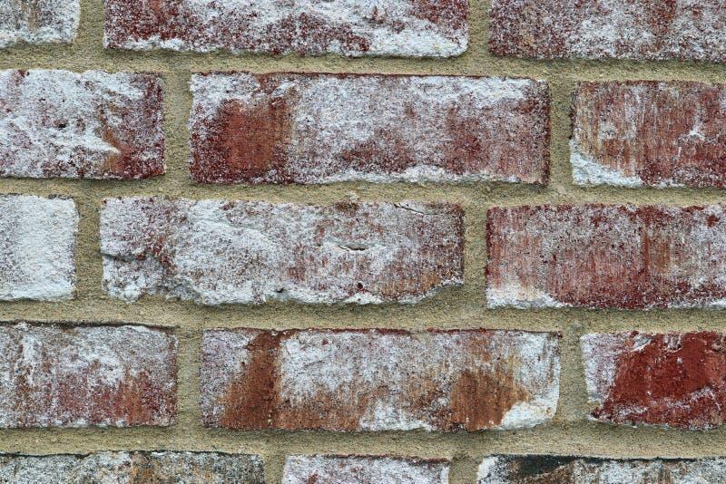 Specificerat tätt upp sikt på röda red ut tegelstenväggar med några sprickor i hög upplösning arkivbild