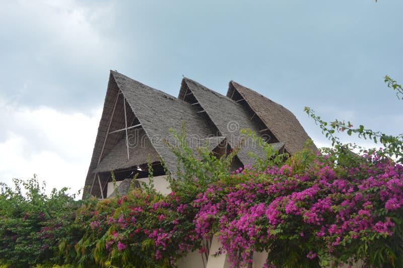 Specifiek en overweldigend huis met drie daken stock foto