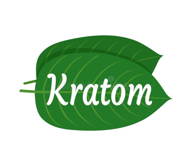Speciosa Mitragyna, kratom λογότυπο φύλλων ελεύθερη απεικόνιση δικαιώματος