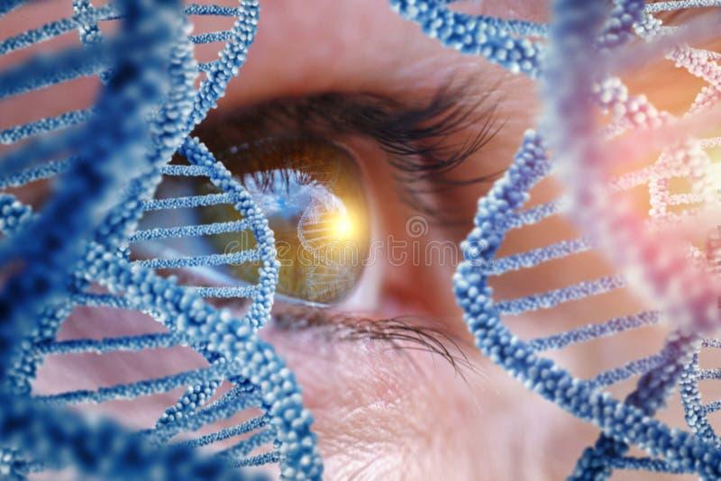 Specjalista nadzoruje DNA zdjęcie royalty free