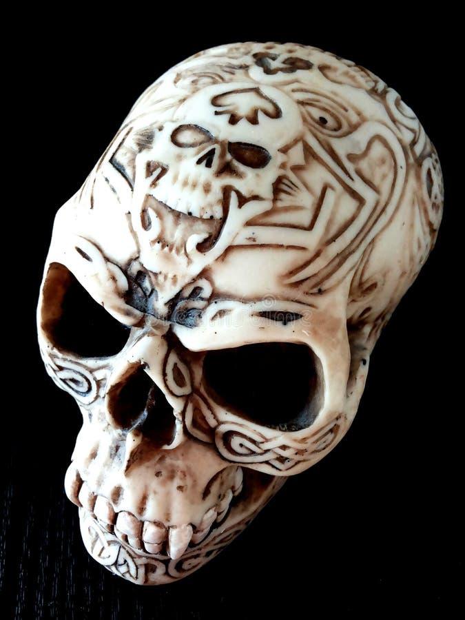 Specjalna czaszka obrazy stock