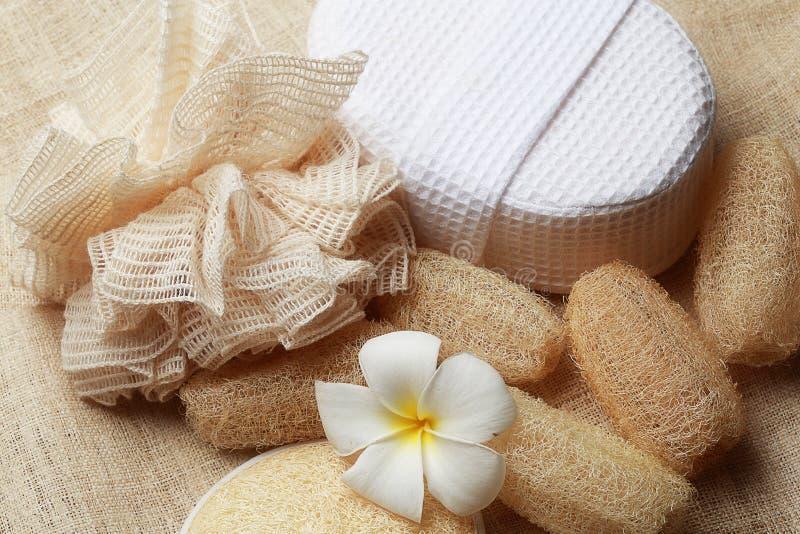 Specjalny pętaczki mydło na zdroju ustawiającym dla zdrowej skóry fotografia royalty free