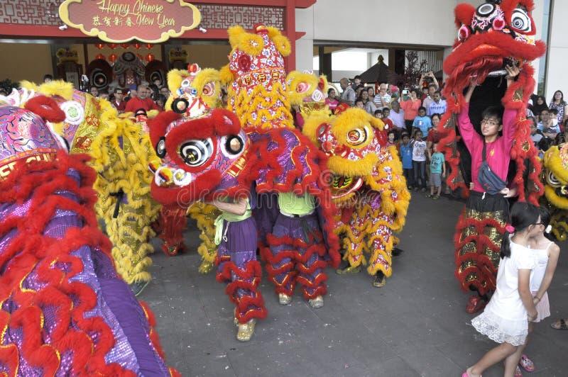 Spectacle de danse du lion lors du Festival du Nouvel An chinois à Seremban, Malaisie image libre de droits