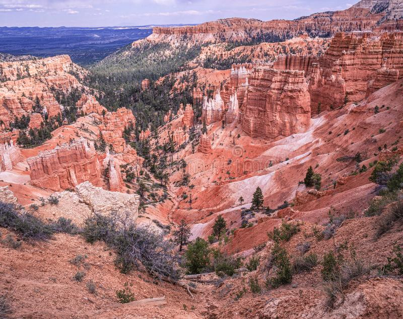 Spectaculair Bryce Canyon royalty-vrije stock fotografie