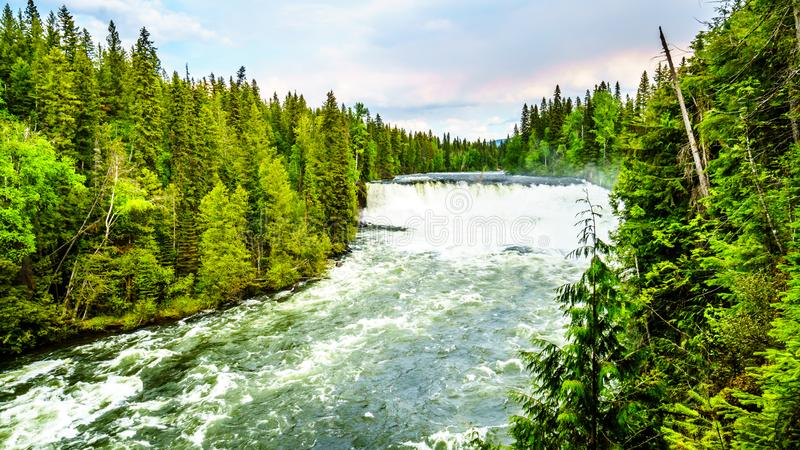 Spectaculair Dawson Falls in Putten Gray Provincial Park, BC, Canada royalty-vrije stock foto's