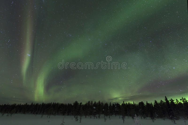Spectacular aurora borealis (northern lights). royalty free stock images