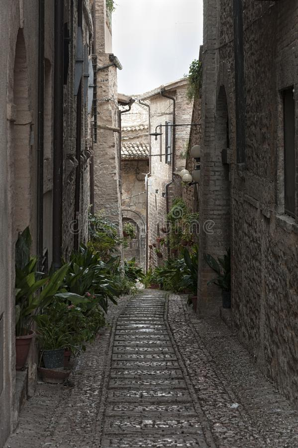 Spectacular colorful traditional italian medieval alley in the historic center of beautiful little town of Spello Perugia royalty free stock photography