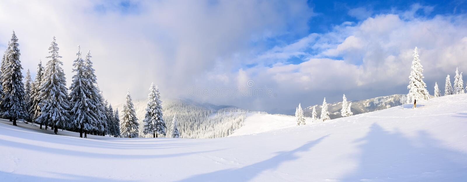 Spectacular panorama is opened on mountains, trees covered with white snow, lawn and blue sky with clouds. stock image