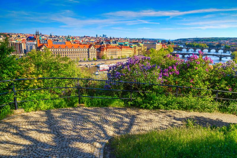 Spectacular summer cityscape panorama with flowers, Prague, Czech Republic, Europe. Stunning touristic and travel location. Vltava river and bridges with royalty free stock image