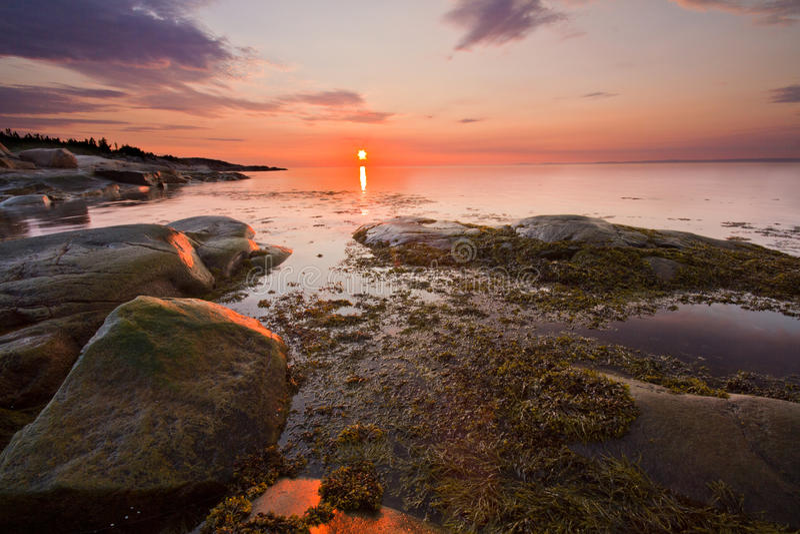 Download Spectacular sunshine stock image. Image of pink, perce - 25804785