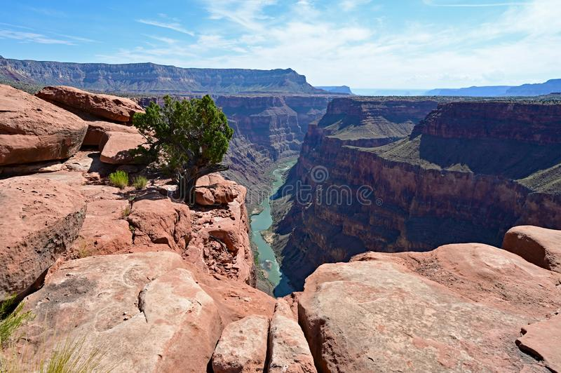 Colorado River from Toroweap Overlook in the Grand Canyon. The spectacular view of the inner canyon and the Colorado River from Toroweap Overlook in Grand royalty free stock image