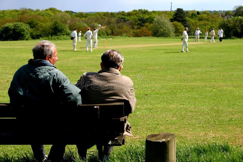 Spectateurs d'allumette de cricket de village photographie stock libre de droits