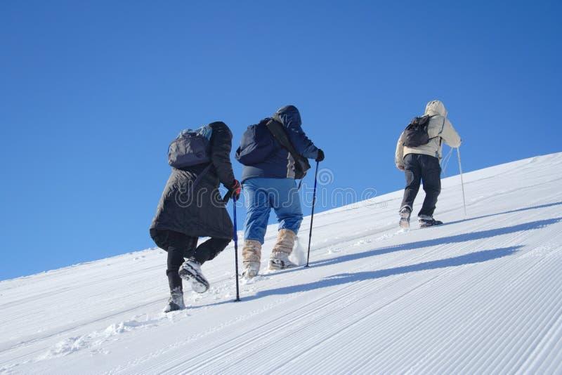 Spedizione alpina fotografia stock