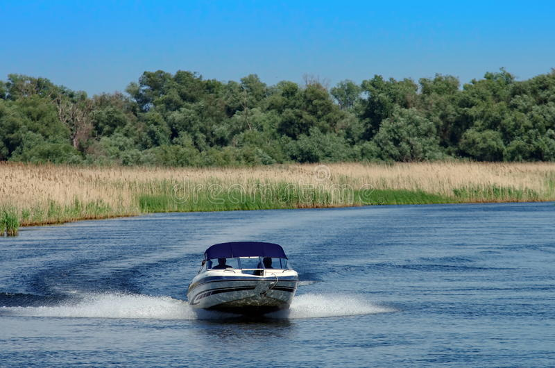 Summer landscape. Speed ​​boat in Danube Delta, landmark attraction in Romania. Danube River stock images