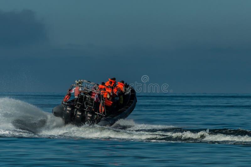 Speed motor boat transporting people on sea. Speed motor boat transporting people on sea stock photos