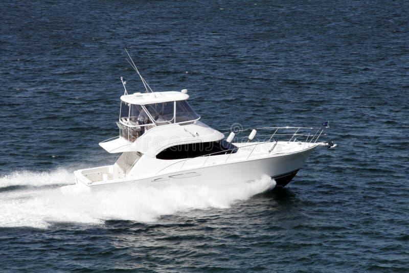 speedboat arkivfoton