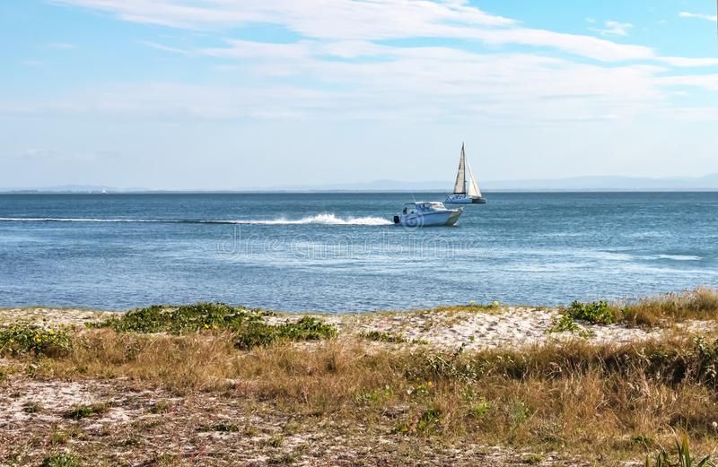 Speeding motorboat and catamaran sailboat in bay with faint mountains in distance and beach with grass and wildflowers in royalty free stock photo