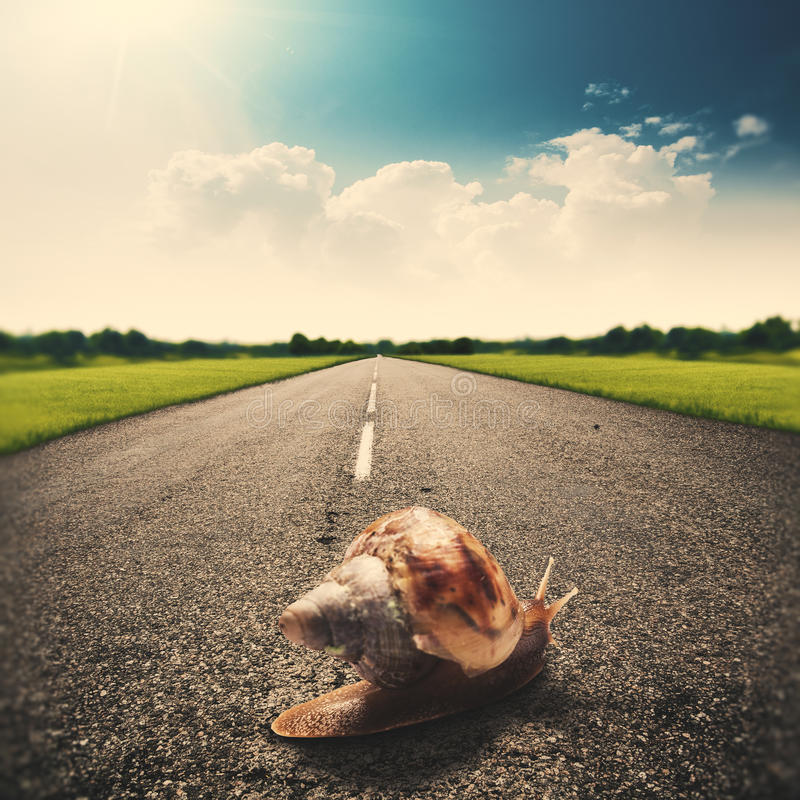 Speedy snail. Abstract funny travel backgrounds stock photography