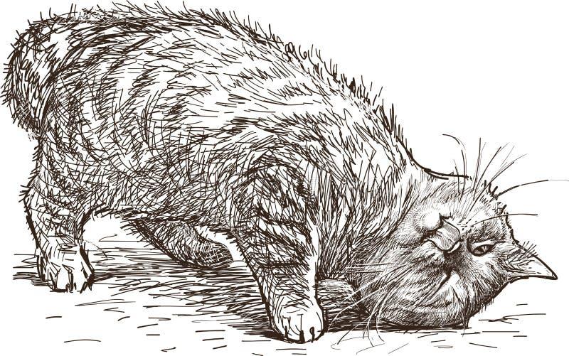 Speelse kat vector illustratie