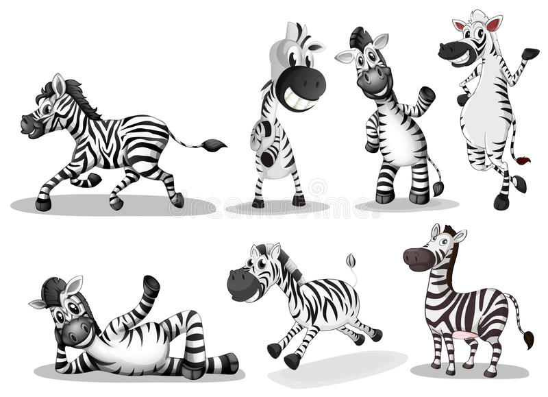 Speelse zebras stock illustratie