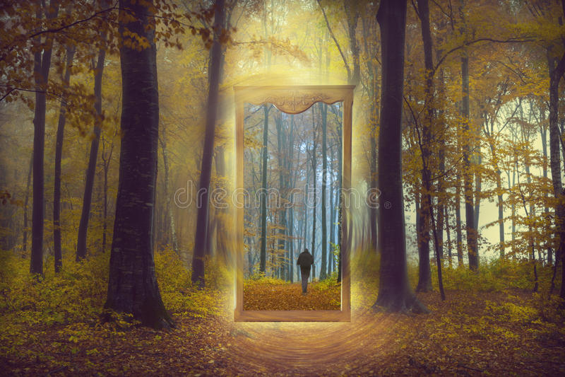 Spegel till och med en annan värld i en dimmig skog arkivfoto