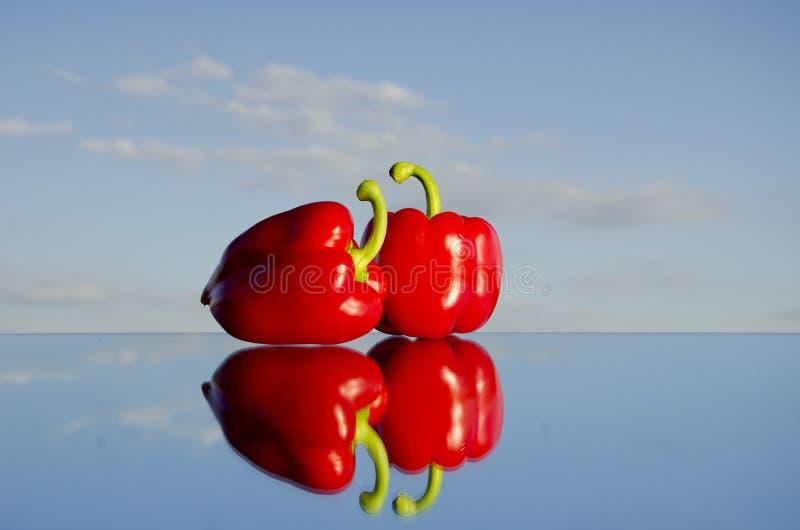 Download Spegeln pepprar red två arkivfoto. Bild av grönsak, reflexion - 19775526