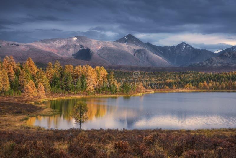 Spegelyttersida härligt Autumn Landscape With Snowy Mountain för sjö område på bakgrund royaltyfri bild