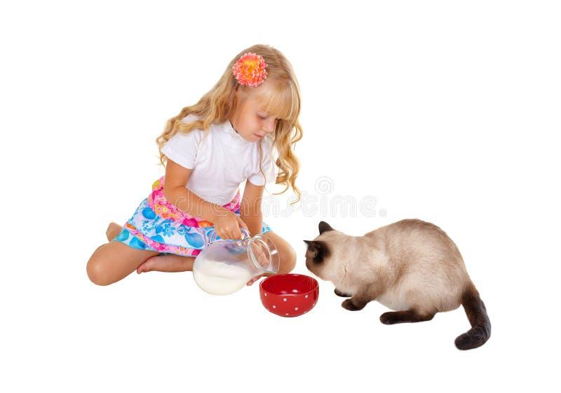Speisenkatze des Mädchens mit Milch lizenzfreie stockbilder