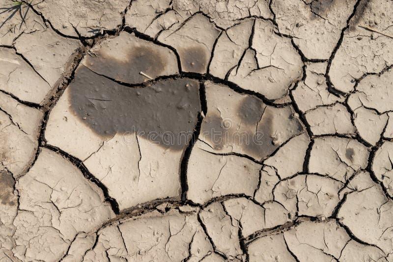 Spekana ziemia podczas suszy Brak woda w terenach z niskim opady deszczu obrazy stock