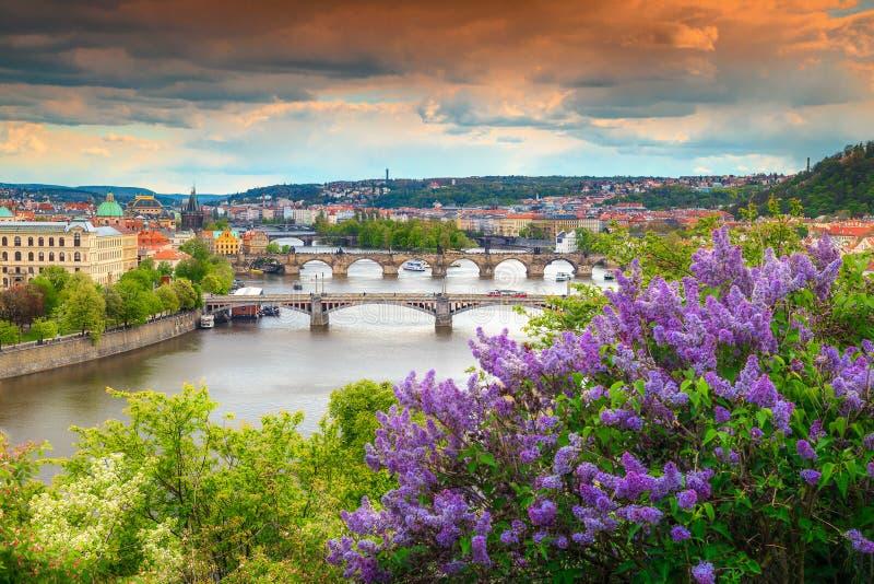 Spektakulär vårpanorama med den berömda Prague staden, Tjeckien, Europa arkivbilder